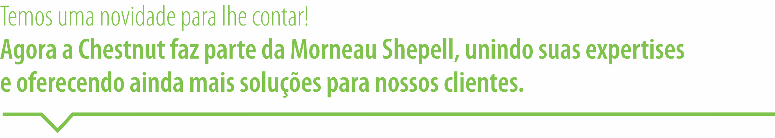 header-email-Morneau Shepell-site